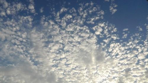 今日の空_141025500.jpg